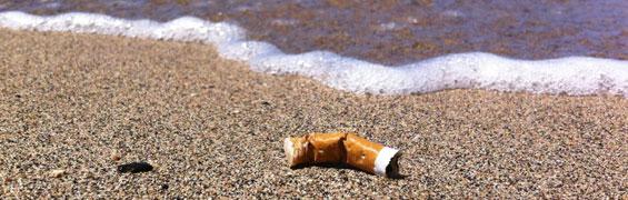 maui cigarette butt free beaches campaign