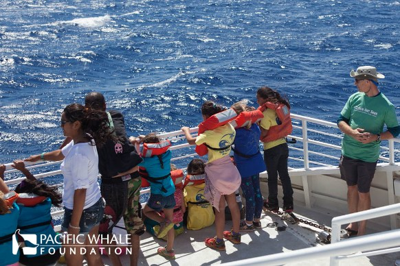 multiple children with adults obserivng from the bow of the boat during a keiki whalewatch
