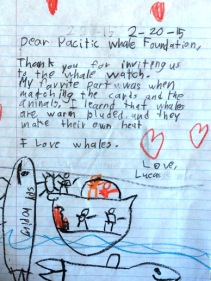 Dear Pacific Whale Foundation, Thank you for inviting us to the whale watch. My favorite part was when matching the cards and the animals. I learned that whale are warm blooded and they make their own heat. I love whales. Love, Lucas