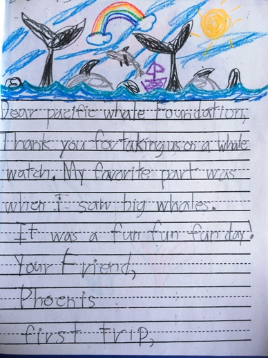 Dear Pacific Whale Foundation, Thank you for taking us on a whale watch. My favorite part was when I saw big whales. It was a fun fun day! Your Friend, Phoenis first trip