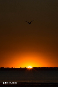 Sunset over Hervey Bay, Australia
