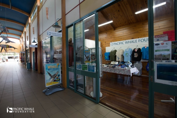 Pacific Whale Foundation shop in Hervey Bay, Australia