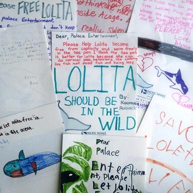 Lolita Petitions