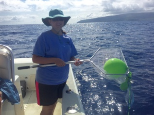 Our researchers collect and study marine debris