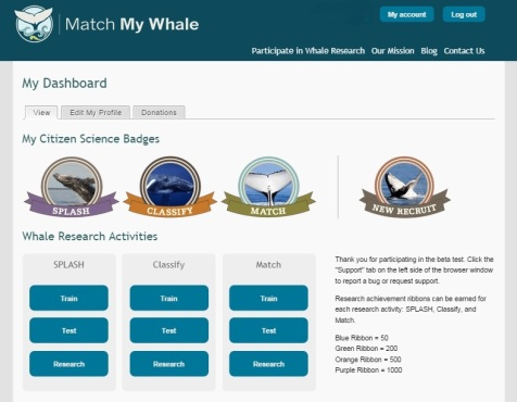 Match My Whale