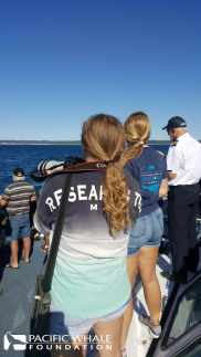 PWF Research Assistants Eilidh (left) and Rachael (right) record data and photos while watching a pod of humpback whales.