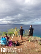 Pu'u Olai provides an excellent vantage point for surveys