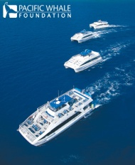 Four of PWF's nine ecotourism vessels
