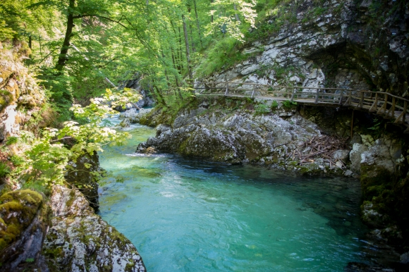 The Vintgar gorge is an impressive landscape where turquoise waters carve its way through vertical rocks creating waterfalls, pools and rapids. This natural resource is classified among the more important tourist sights in Slovenia.