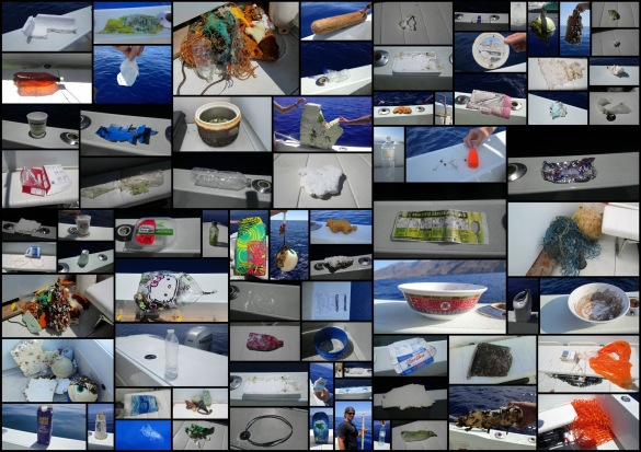 A small sampling of plastic debris collected by the PWF research team