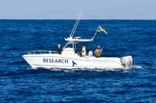 PWF's research vessel Ocean Protector
