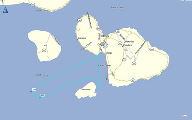 GPS track of Ocean Protector's effort and locations of pilot whale sightings