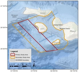 Study area for the 2018-2022 false killer whale study