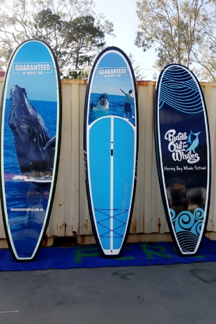 Official Ocean Festival Paddle Boards